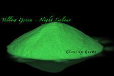 Premium Glow in the Dark pigment powder Yellow Greeen Medium particle - 100g