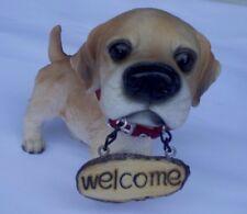 """""""WELCOME""""  DOG"""