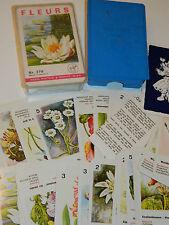 vintage FERD.PIATNIK quartett WIEN nr.278 fleurs JEU de CARTE card BLUMEN flower