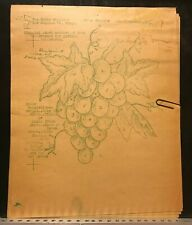 Kaz Reddi-to-Cut F17 Wax Stencil for Textile Painting Grapes Vintage Used