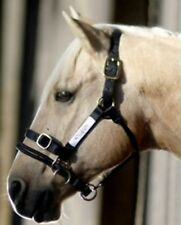 Monty Roberts DUALLY HALTER - Medium black nylon headcollar How to use it DVD