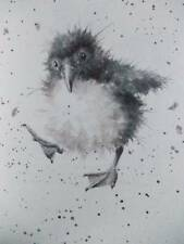 PUFFIN - BABIES - HANNAH DALE - IVORY MOUNTED PRINT