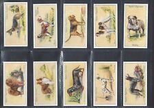 OGDENS - DOGS - FULL SET OF 50 CARDS