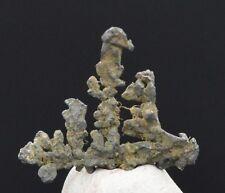 Rare Argent Natif - NATIVE SILVER - 0,76 grammes - USA