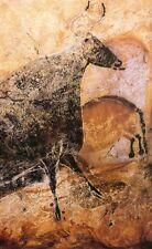 Cattle : Lascaux Cave Painting :  Art Print