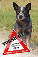 Australian CATTLE DOG - A4 Metall Warnschild Hundeschild Alu SCHILD - ACD 06 T3