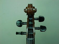 Old two pieces back Violin by JTL