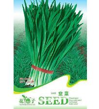 Leek Seeds Chives Fragrant-Flowered Garlic Seeds ~1 Pack 100 Seeds~