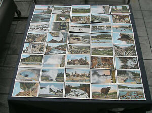 Lot of 45 Vintage Haynes Photo Yellowstone National Park Post Cards