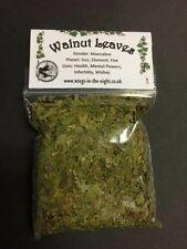 WALNUT LEAVES Dried Magical Herb ~ Health, mental powers, wishes ~ Pagan/Wicca
