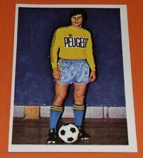 273 SOLER FCSM SOCHAUX MONTBELIARD AGEDUCATIFS FOOTBALL 1973-1974 73-74 PANINI