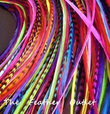 Lot 10 Grizzly Solid Feathers Hair Extensions saddle Colors Bright Real RAINBOW