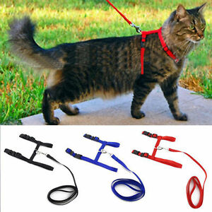 Cat Puppy Adjustable Harness Collar Nylon Leash Lead Safety Walking Rope Durable