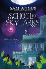 More details for school for skylarks-sam angus