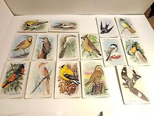 USEFUL BIRDS OF AMERICA TENTH SERIES LOT OF 15 LITHO ARM & HAMMER TRADING CARDS