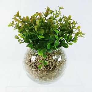 Glass Bowl Vase with Faux Greenery Handcrafted by Collins Creek Collections