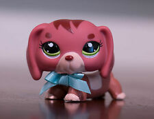 Littlest Pet Shop LPS #3601 Bobble in Style with Green Eyes Dachshund Dog Puppy