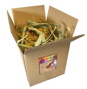 Bunny Bistro Forage Box - Rabbit & Guinea Pig, Hay & Botanical Natural Food Box