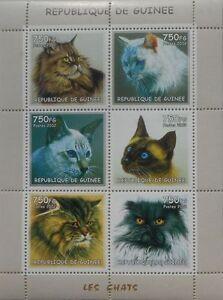 Domestic Cats m/s Guinea  2002 MNH  #gu241