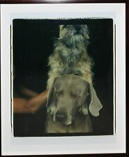 WILLIAM WEGMAN-NY/MA Surrealist- Signed Large Polaroid- Weimaraner Portrait