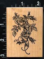 RARE LIMITED ROSE BLOOM GARDEN FLOWER BOTANICAL PSX Wood Mounted Rubber Stamp