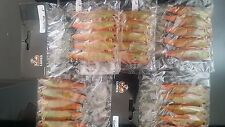"""25 pre-rigged soft plastic fishing lures BRAND NEW 4"""" curly tail lure"""