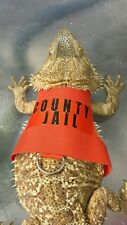 "Lil' Bestie Bearded Dragon reptile Harness and Leash COUNTY JAIL ""ESCAPEE"""