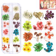 24pcs Dry Dried Flower for UV Gel Acrylic 3D Nail Art Tips Descoration DIY Tools