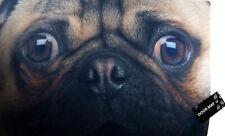 Pug Dog Novelty Door Mat 40x60cm