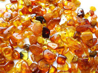 Natural Polished Chip Baltic  Holed Amber Loose Beads  20g +  Screw Clasps