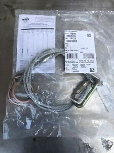 10' Cable 3M PROTECTA 2190104 Twin/Dual-ring Tie-Off Adaptor, Fall Arrest Anchor