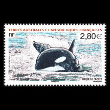 TAAF 2010 - Marine Life Wale - Sc 428 MNH