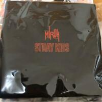 STRAY KIDS HI-STAY TOUR FINALE IN SEOUL MINI SQUARE POUCH bag No photocard