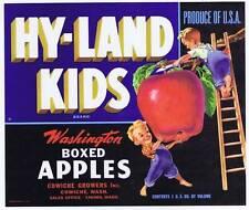 Hy-Land Kids, original washington apple crate label,boys, ladder, cowiche