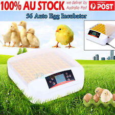 56 Egg Family Incubator Fully Automatic Turning Poultry Goose Quail Duck Chicken