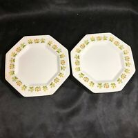 Pair of Vintage JOHNSON BROS IRONSTONE POSY Octagon Dessert Plates