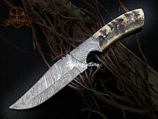 """10"""" Full Tang Handmade Damascus steel Knife with sheep horn Handle"""