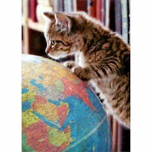 Avanti Press Kitten On Globe Graduation Card
