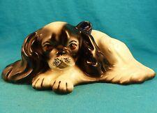 Czechoslovakia old King Charles Cavalier spaniel Japanese chin vintage dog