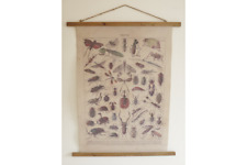 FABRIC INSECTS BUGS DECORATIVE WALL HANGING AGED LOOK