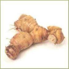 ALPINIA GALANGA Willd-Greater orJava Galangal-Siamese Ginger-KULANJAN   100gs