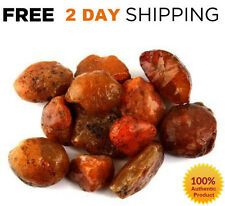 1/2 LB Rough CARNELIAN Lot STONES CRYSTALS Raw Set Natural LARGE Healing Red