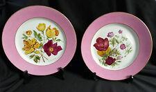 paire d'assiettes faïence Creil et Montereau Barluet peintes main XIXème