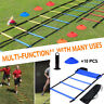 Speed Agility Train Kit, Flat Ladder + 10pcs Disc Cones+1Rack Athletic Training