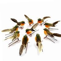 Yolococa 10PCS Robin Bird Christmas Tree Decoration Craft Artificial Feather