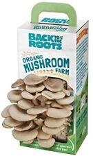 Back to the Roots Organic Mushroom Growing Kit, Harvest Gourmet Oyster Mushroom