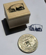 P24 Miniature pig rubber stamp