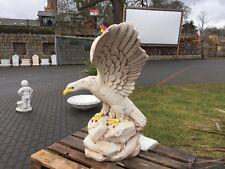 Adler,Vogel , Falke , Raubvogel ,Greifvogel, Amerikanischer Steinkopfadler