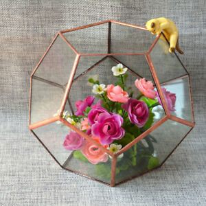Irregular Glass Geometric Terrarium Box Succulent Plant Planter Home Table
