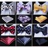 HISDERN Polka Dot Men Woven Silk Wedding Self Bow Tie handkerchief Set#RD2